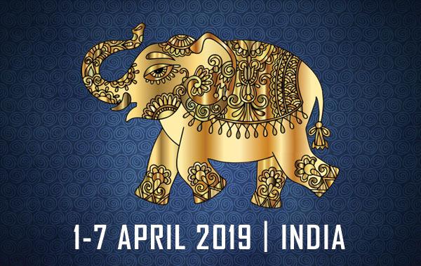 maharaja-challenge-2019