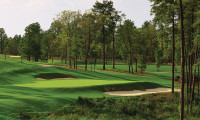 Pinehurst No.8 Course